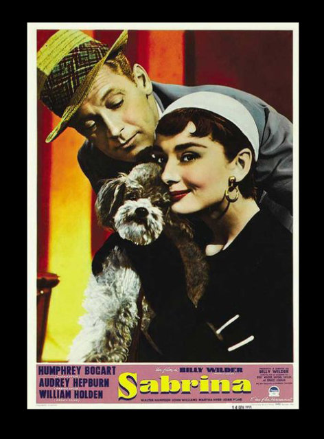 Poodle Time!-Poodles and Movie Posters