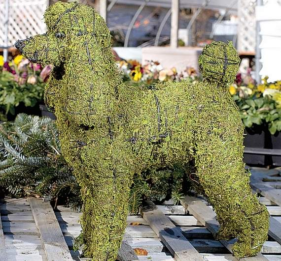 Poodle Time!-Poodle Up Your Home and Garden